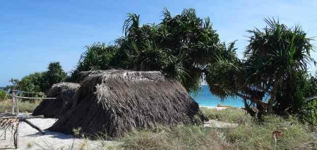 Pulau Doo